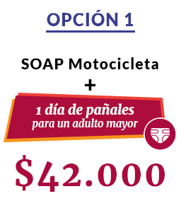 SOAP Moto 1