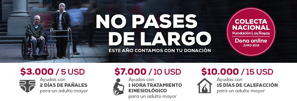 banner-para-sitios-de-donacion2-paypal
